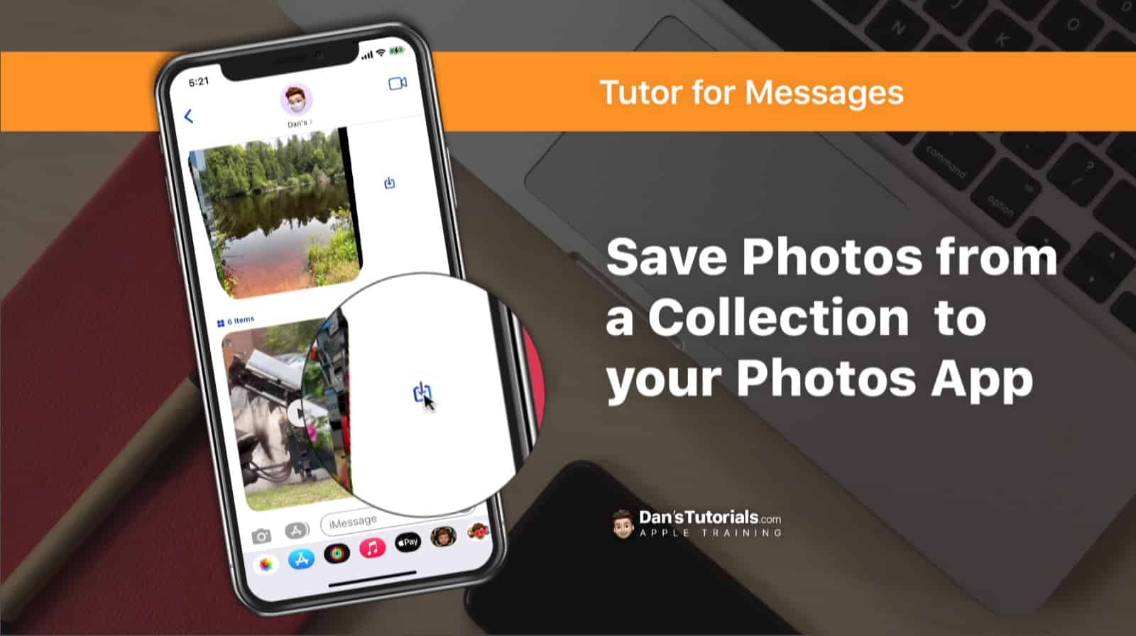 Save Photos from a Collection to your Photos App